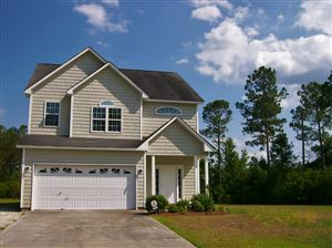 Photo of 114 Sunny Point Drive, Richlands, NC 28574 (MLS # 100170348)