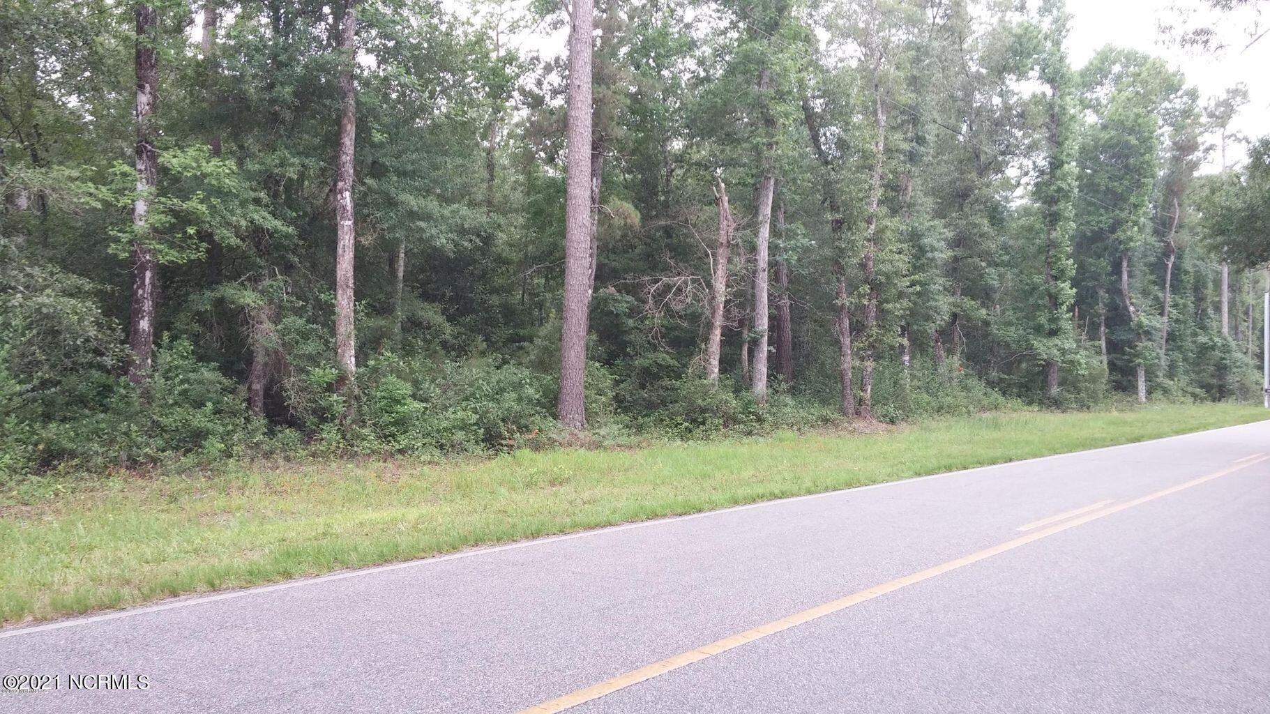 Photo of 4233 Mt Misery Road NE, Leland, NC 28451 (MLS # 100296348)