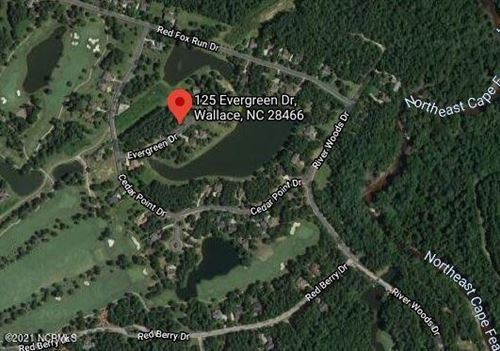 Photo of 125 Evergreen Drive, Wallace, NC 28466 (MLS # 100259353)