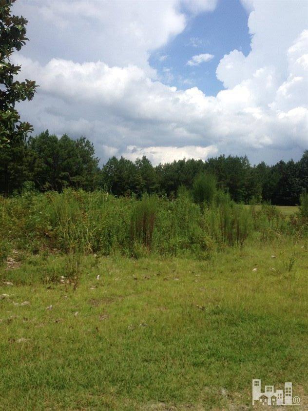 Photo of 1 Jenn Road, Burgaw, NC 28425 (MLS # 100045353)