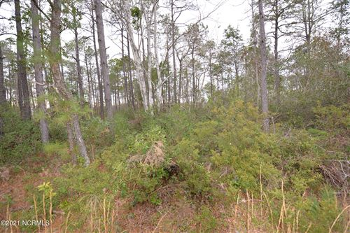 Photo of 224 W South Shore Drive, Boiling Spring Lakes, NC 28461 (MLS # 100251357)
