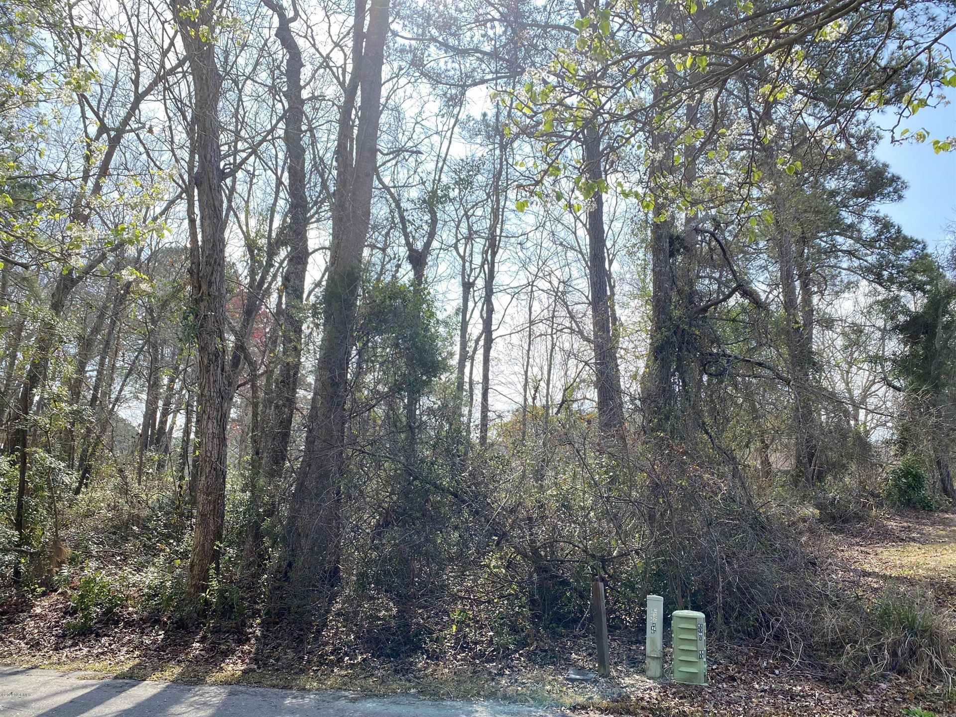 Photo of 4065 Forest Lake Drive SW, Shallotte, NC 28470 (MLS # 100212358)