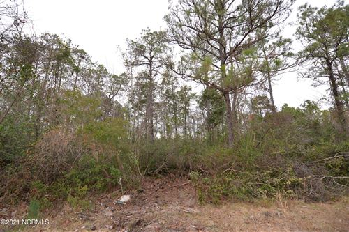 Photo of 236 W South Shore Drive, Boiling Spring Lakes, NC 28461 (MLS # 100251359)