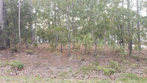Photo of 29 Lumbee Road, Boiling Spring Lakes, NC 28461 (MLS # 100296359)