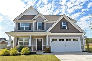 Photo of 91 W Conolly Court, Hampstead, NC 28443 (MLS # 100190361)