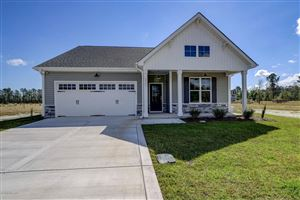 Photo of 1237 Big Field Drive, Castle Hayne, NC 28429 (MLS # 100159363)