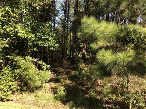 Photo of 16 W Pointe Road, Rocky Point, NC 28457 (MLS # 100185365)