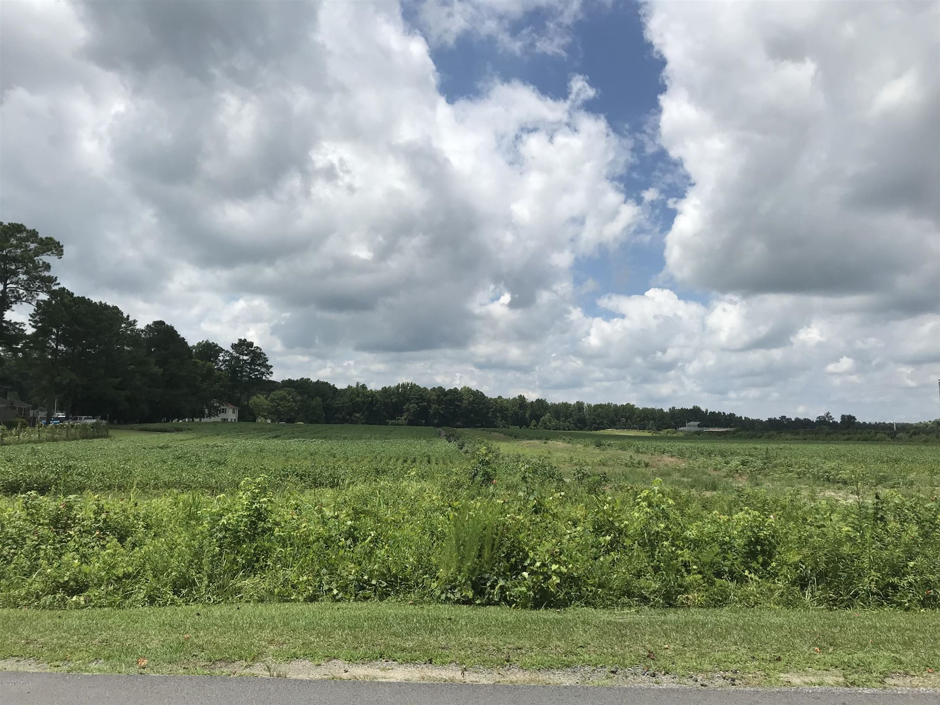 Photo of Lot #17 Canal Road, Williamston, NC 27892 (MLS # 100230365)