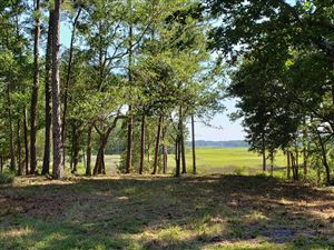 Photo of 3123 River Hills Drive SW, Shallotte, NC 28470 (MLS # 100177371)