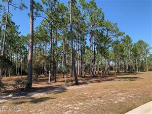 Photo of 2554 Eagle View Drive, Southport, NC 28461 (MLS # 100193376)