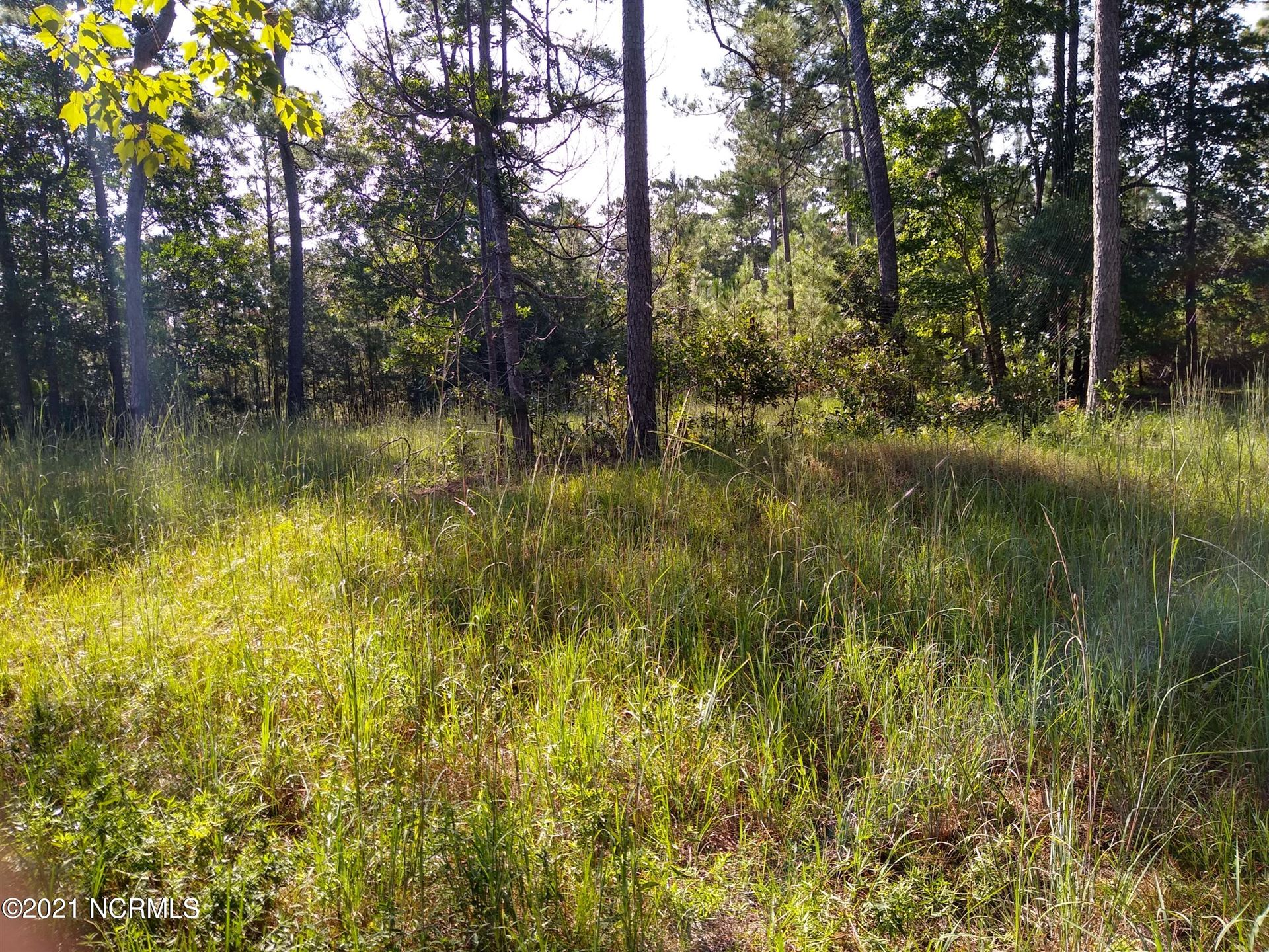 Photo of 000 Bayhill Court, Shallotte, NC 28470 (MLS # 100291383)