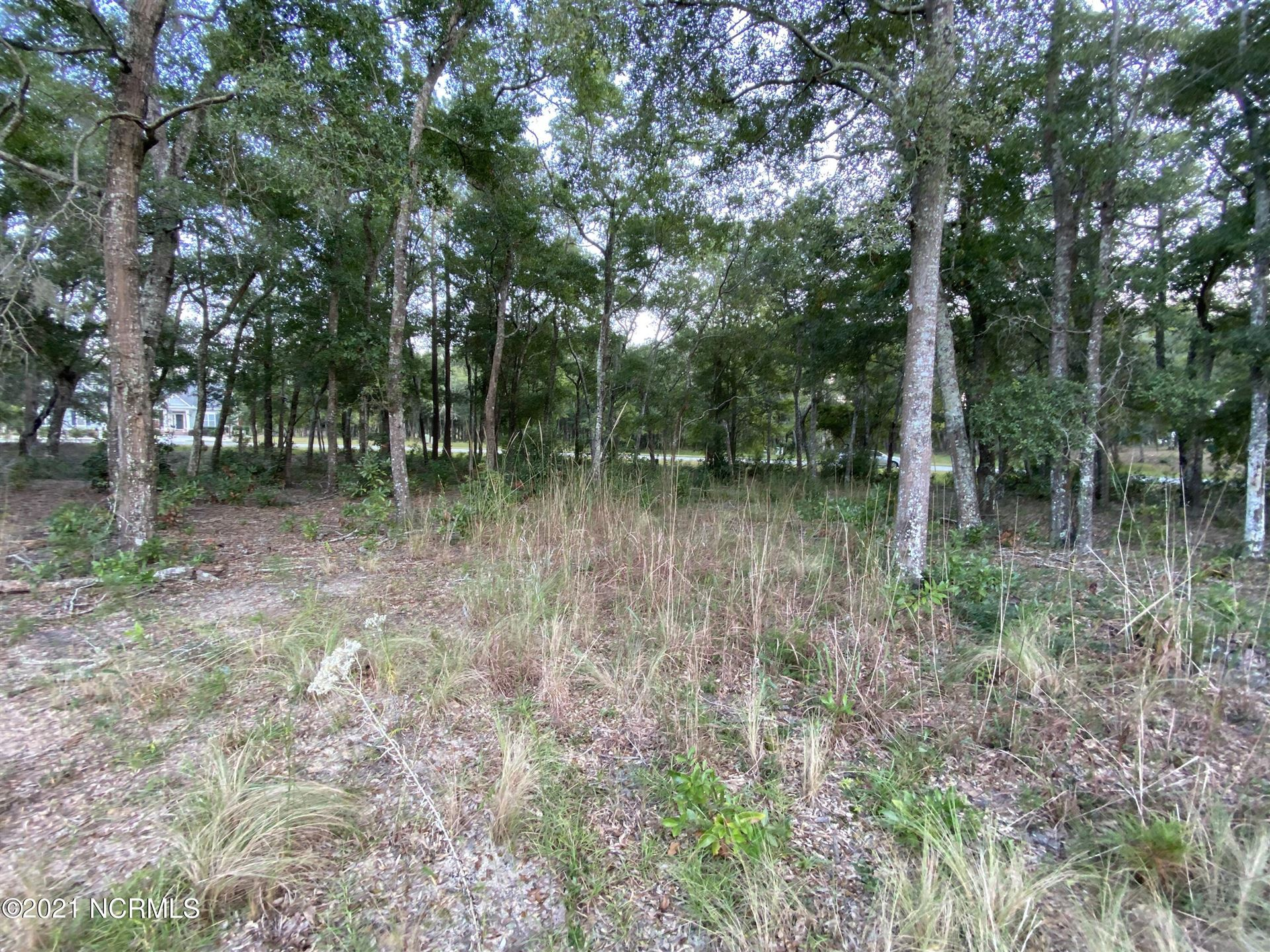 Photo of 3393 Four Water View SW, Supply, NC 28462 (MLS # 100295388)