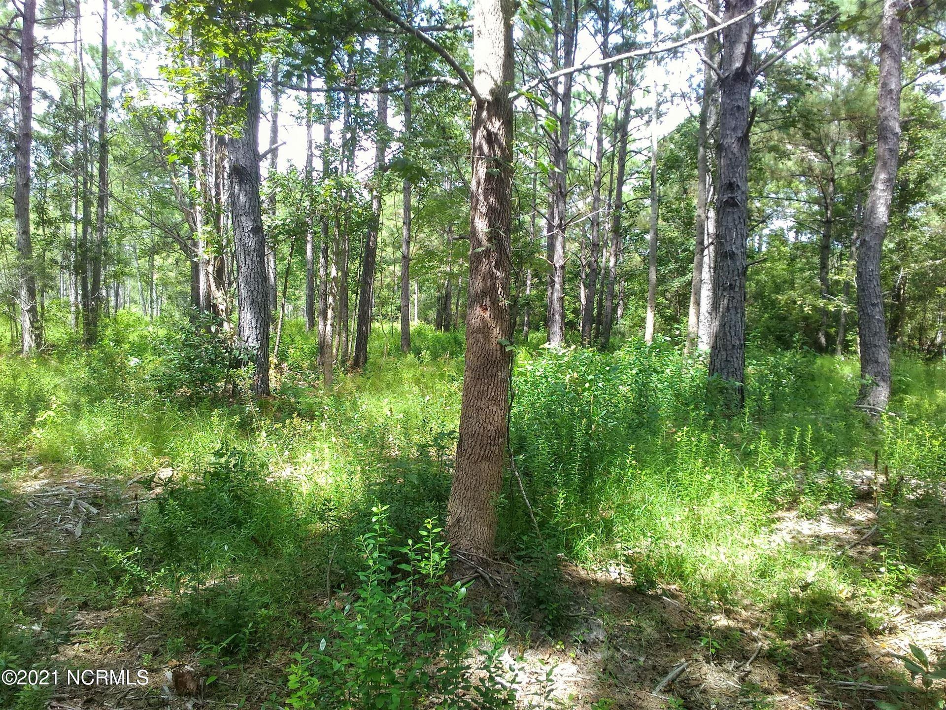 Photo of 39 Cross Creek Drive, Hampstead, NC 28443 (MLS # 100292389)