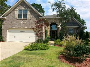 Photo of 309 White Swan Court, Wilmington, NC 28412 (MLS # 100184403)