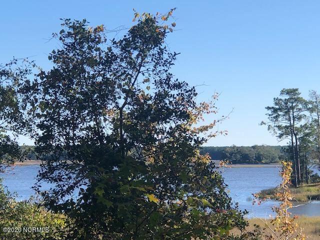 Photo of 154 Beagle Drive, Hubert, NC 28539 (MLS # 100244409)