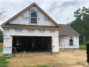 Photo of 1376 Old Fayetteville Road, Leland, NC 28451 (MLS # 100180410)