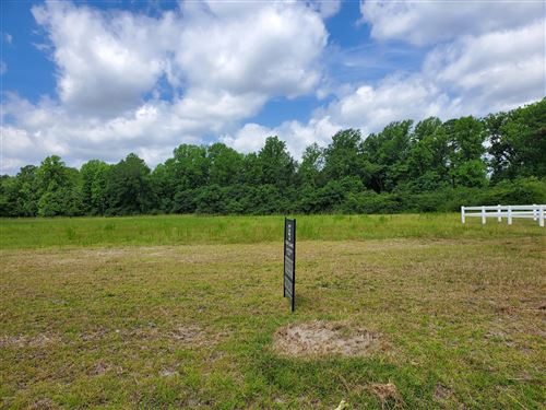 Photo of 910 Haw Branch Road, Beulaville, NC 28518 (MLS # 100232414)