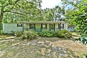Photo of 239 Victory Gardens Drive, Wilmington, NC 28409 (MLS # 100167421)