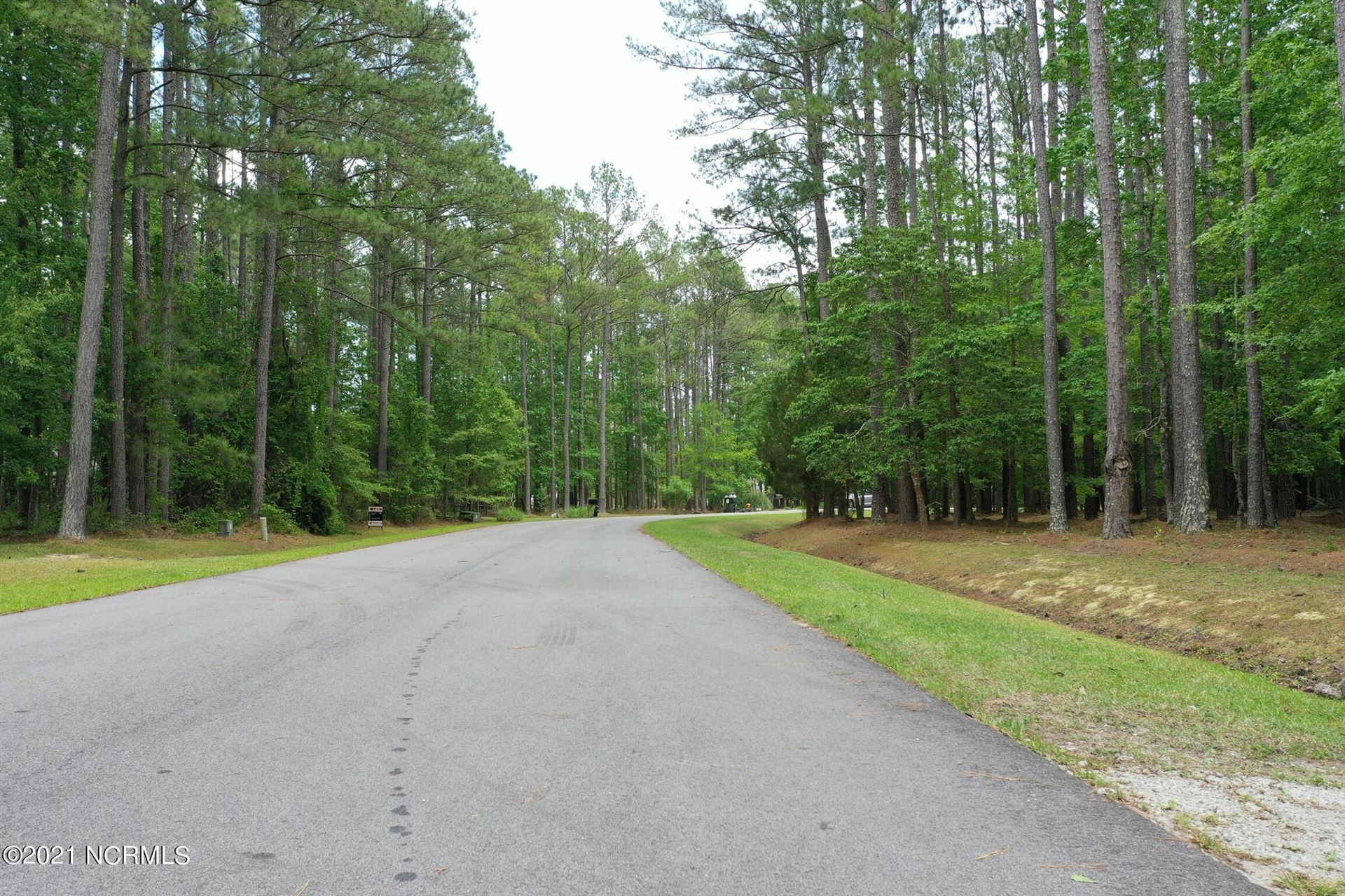 Photo of 168 Spicers Creek Drive, Oriental, NC 28571 (MLS # 100288422)