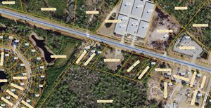 Photo of 0 Southport Supply Road SE, Bolivia, NC 28422 (MLS # 100156434)