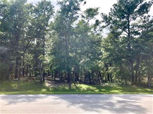 Photo of 3326 Four Water Lane SW, Supply, NC 28462 (MLS # 100181434)