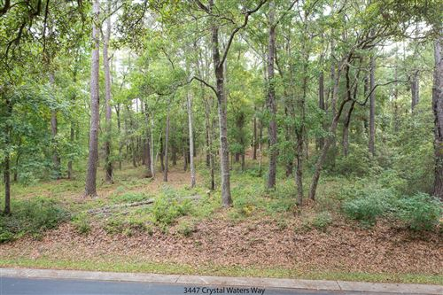 Photo of 3447 Crystal Waters Way SW, Supply, NC 28462 (MLS # 100270436)