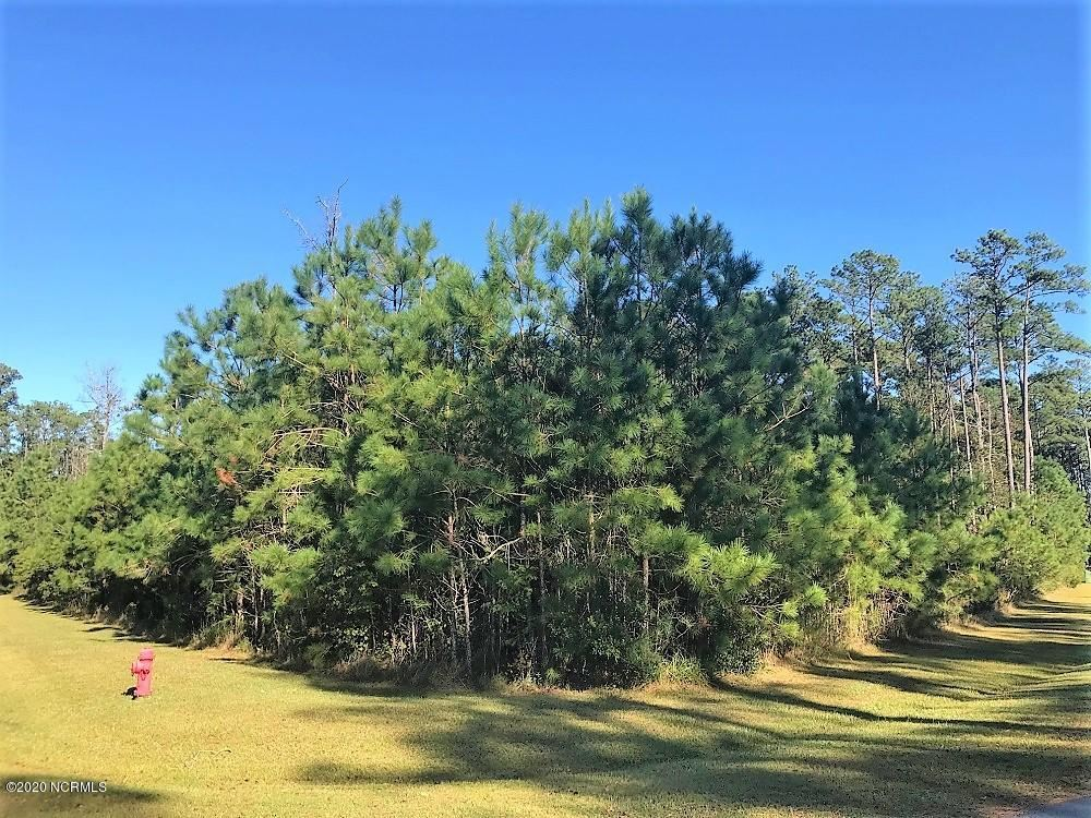 Photo of 101 Queen Annes Lane, Beaufort, NC 28516 (MLS # 100247439)