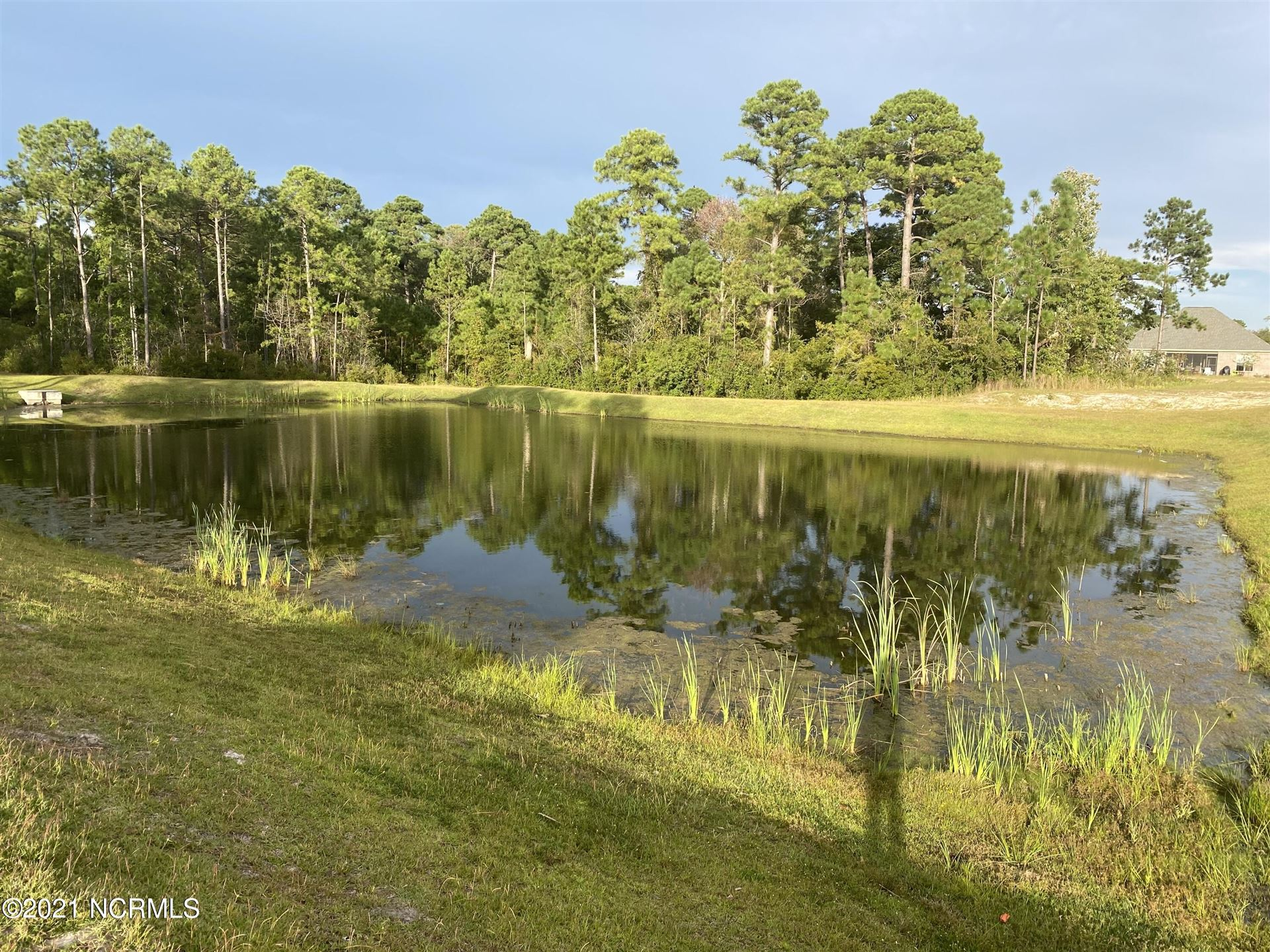 Photo of 428 Motts Forest Road, Wilmington, NC 28412 (MLS # 100296441)