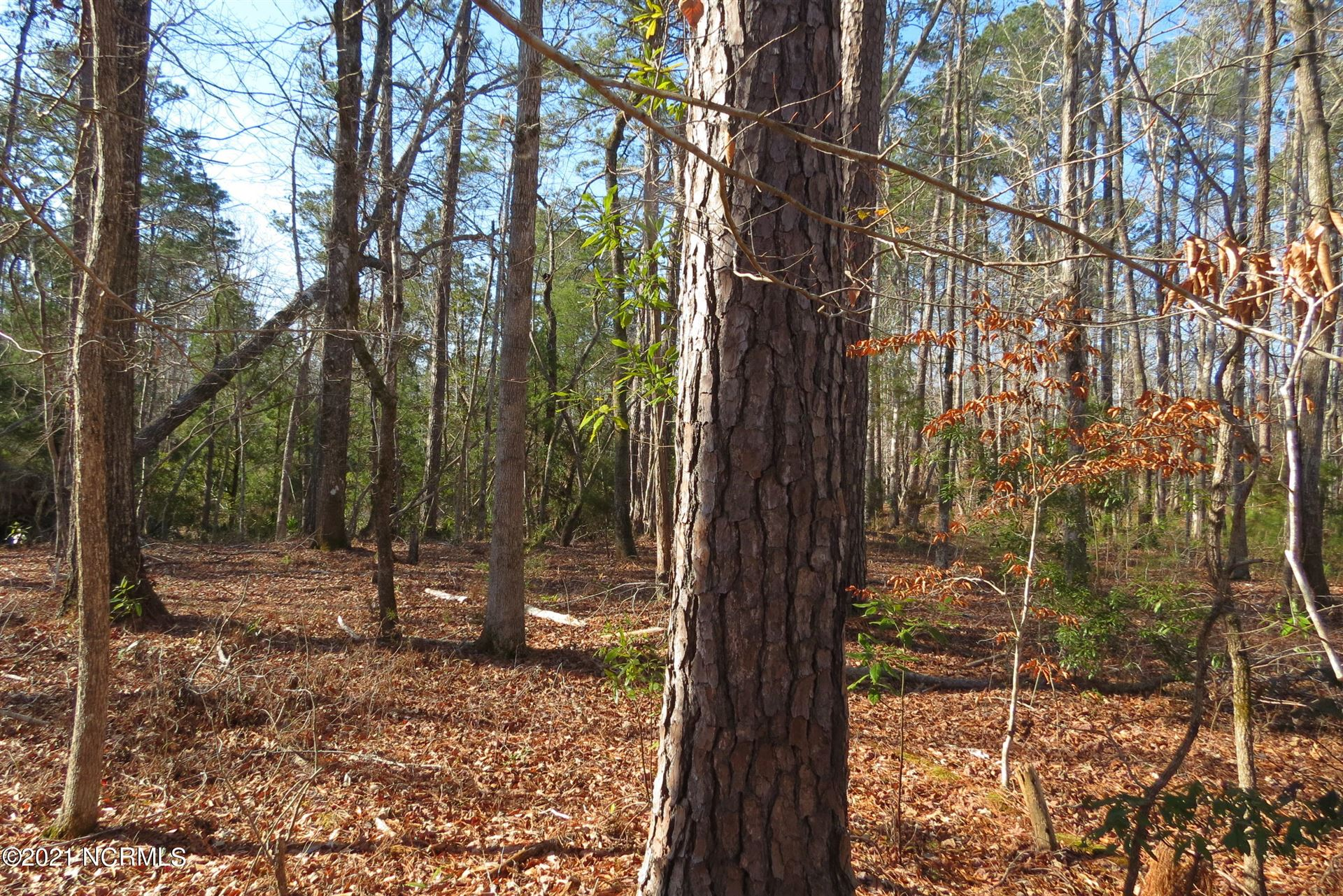 Photo of 98 Winding Creek Drive, Oriental, NC 28571 (MLS # 100259444)