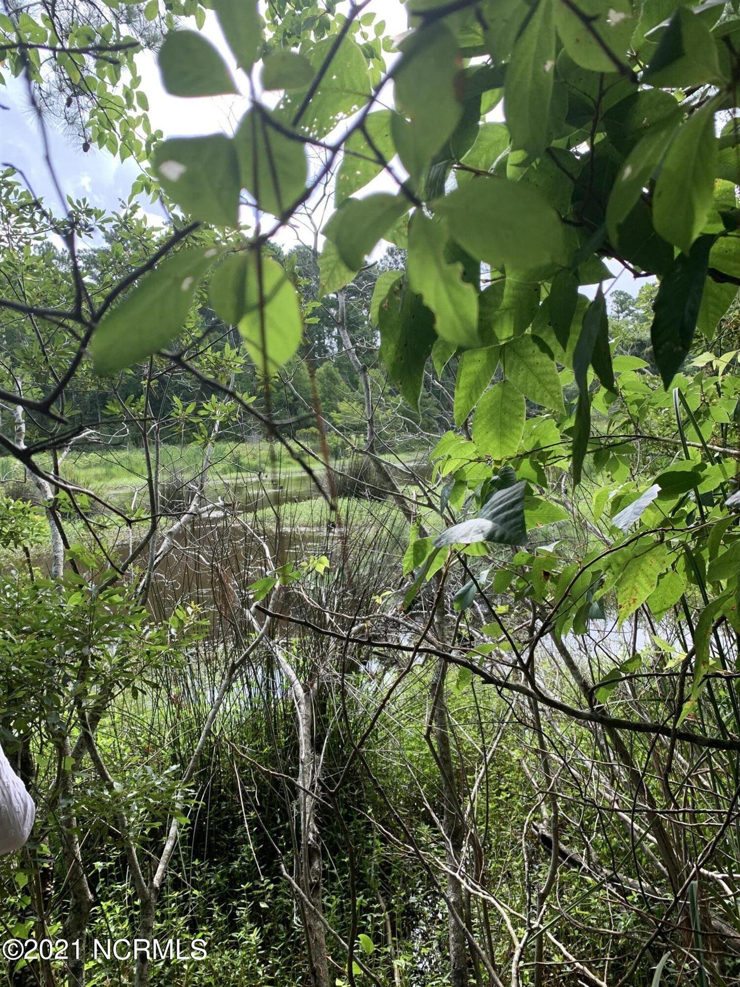 Photo of 126 Little Creek Drive, Havelock, NC 28532 (MLS # 100280451)