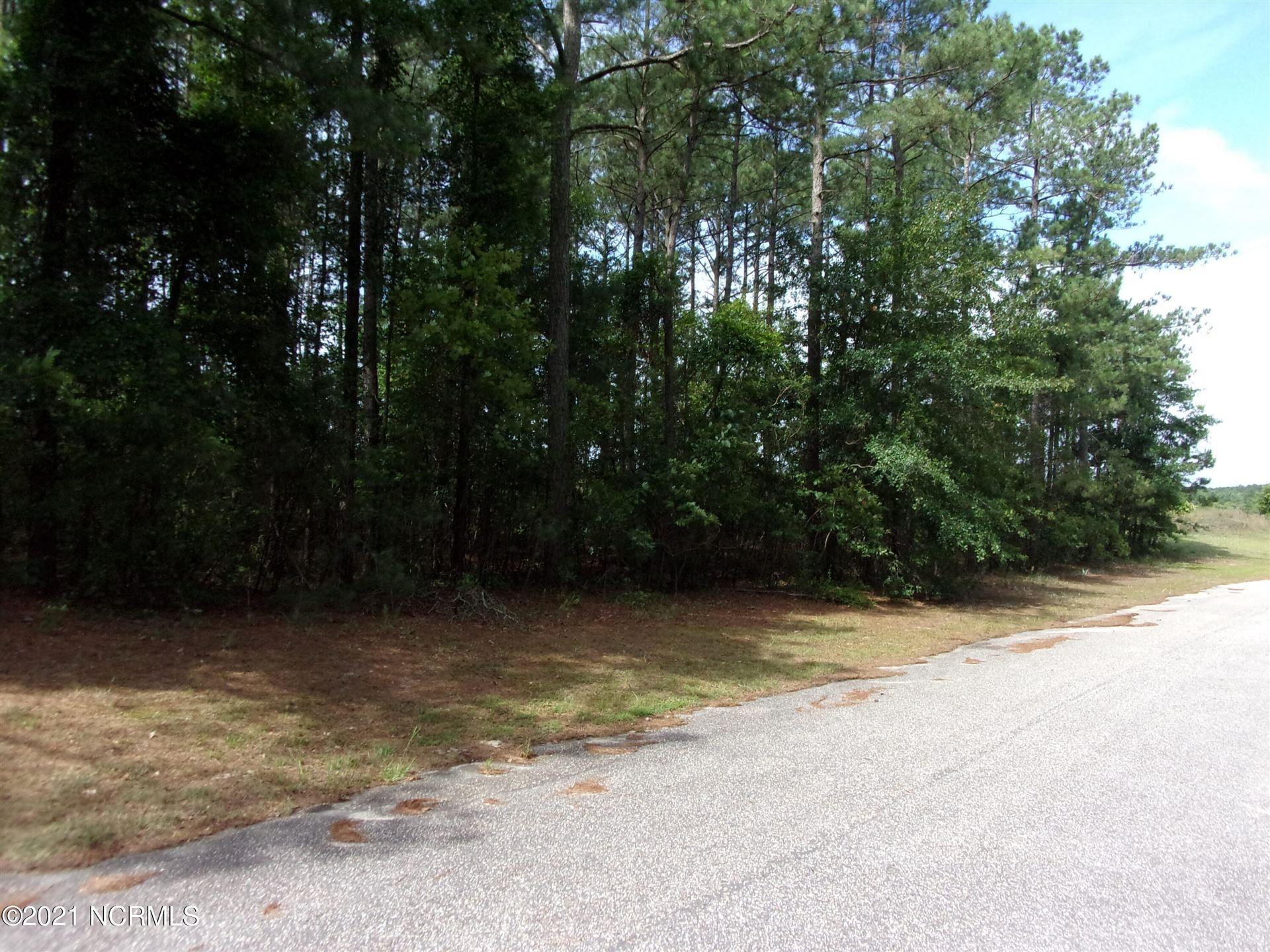 Photo of 17 Old Tom Morris Road, Garland, NC 28441 (MLS # 100278452)