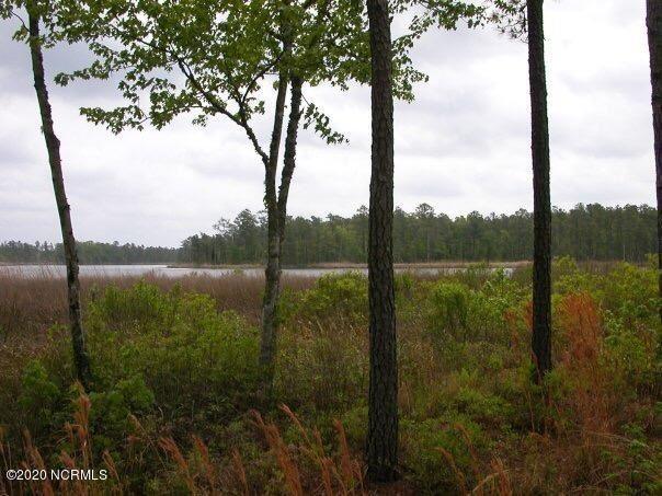 Photo of 37 Windy Pointe, Belhaven, NC 27810 (MLS # 100235454)