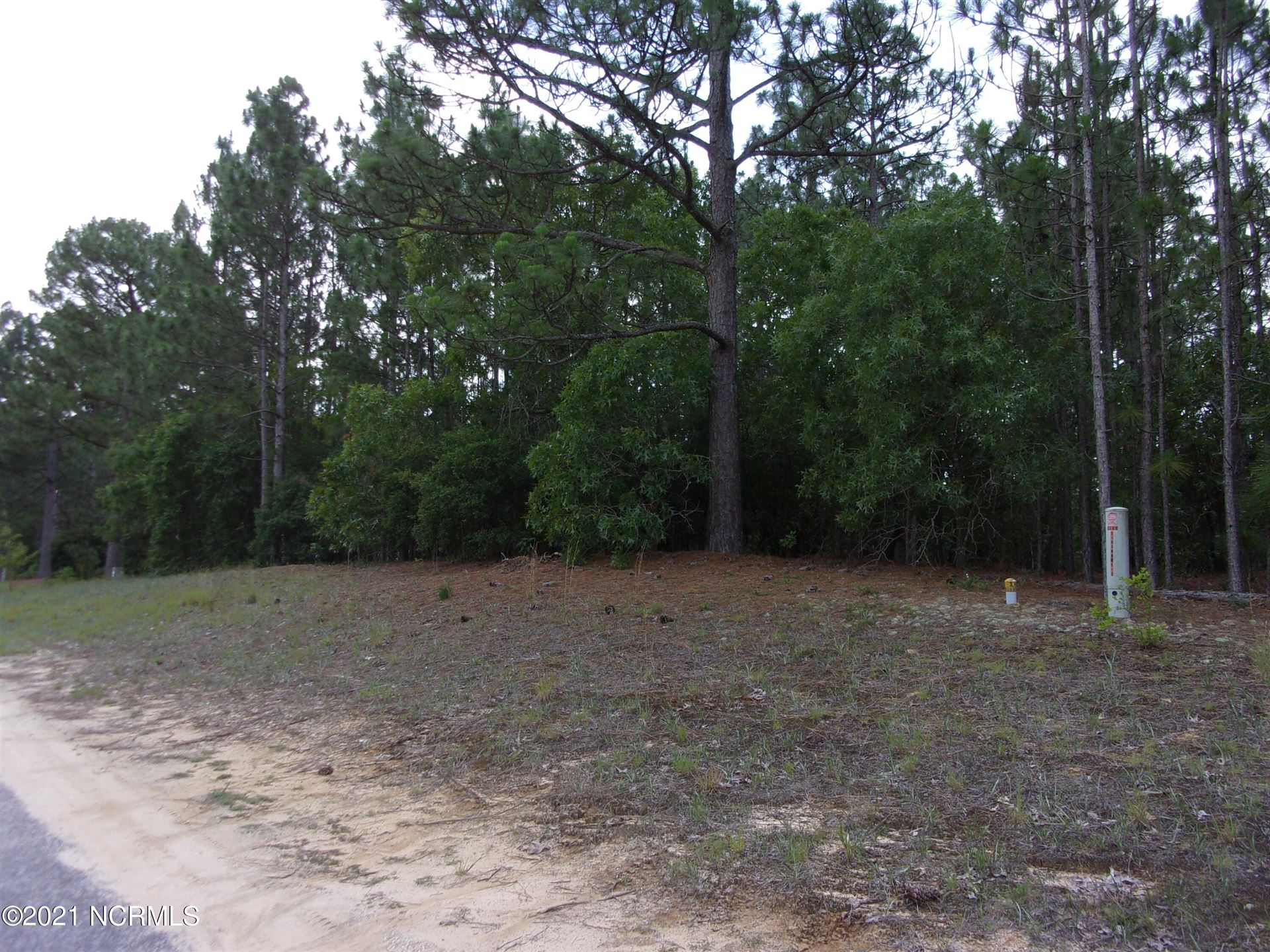 Photo of 28 Old Tom Morris Road, Garland, NC 28441 (MLS # 100278456)