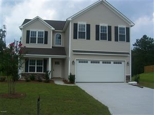 Photo of 462 Avendale Drive, Rocky Point, NC 28457 (MLS # 100145458)