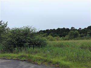Photo of 6302 W Mallard Duck Lane, Southport, NC 28461 (MLS # 100104461)