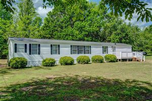 Photo of 41 N Hines Acres Court, Rocky Point, NC 28457 (MLS # 100163463)