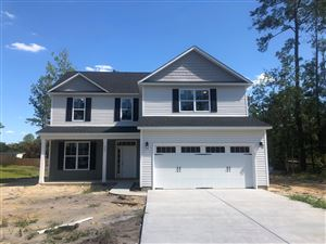 Photo of 393 Bronze Drive, Rocky Point, NC 28457 (MLS # 100154464)
