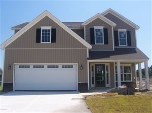 Photo of 447 Avendale Drive, Rocky Point, NC 28457 (MLS # 100145470)