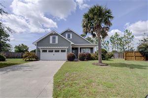 Photo of 245 Palm Grove Drive, Wilmington, NC 28411 (MLS # 100184476)