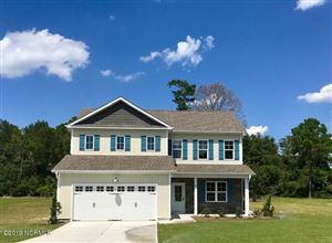 Photo of 40 Chimney Landing Drive, Rocky Point, NC 28457 (MLS # 100167478)