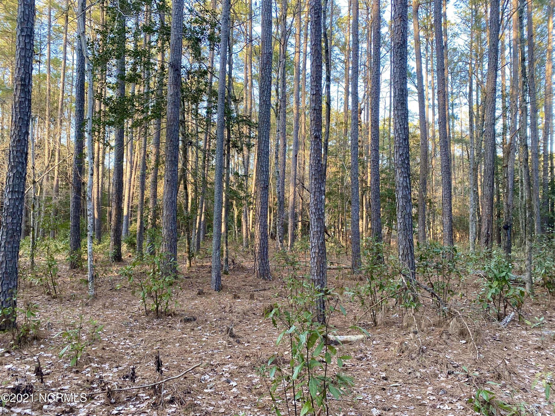 Photo of 134 Tupelo Lane, Washington, NC 27889 (MLS # 100258478)