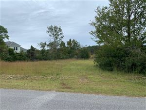 Photo of Lot 47 N Shore Drive, Boiling Spring Lakes, NC 28461 (MLS # 100189479)