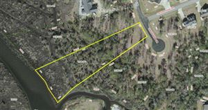 Photo of 207 Creek View Circle, Sneads Ferry, NC 28460 (MLS # 40207484)