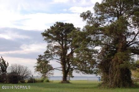 Photo of 5204 Albemarle Drive, Oriental, NC 28571 (MLS # 100112485)