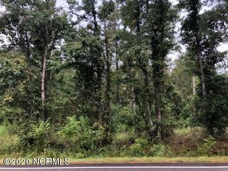 Photo for 7501 Sidbury Road, Wilmington, NC 28411 (MLS # 100236485)