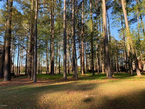 Photo of Lot 92 Cypress Landing Trail, Chocowinity, NC 27817 (MLS # 100212487)