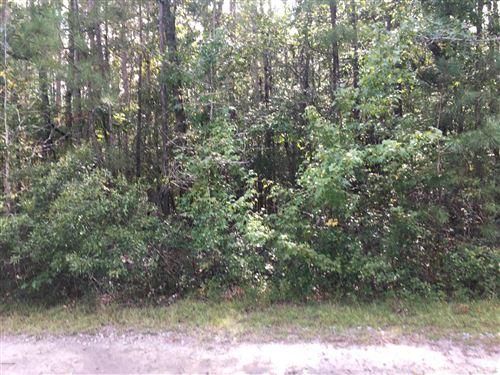 Photo of 1 N Wright Way, Burgaw, NC 28425 (MLS # 100238495)