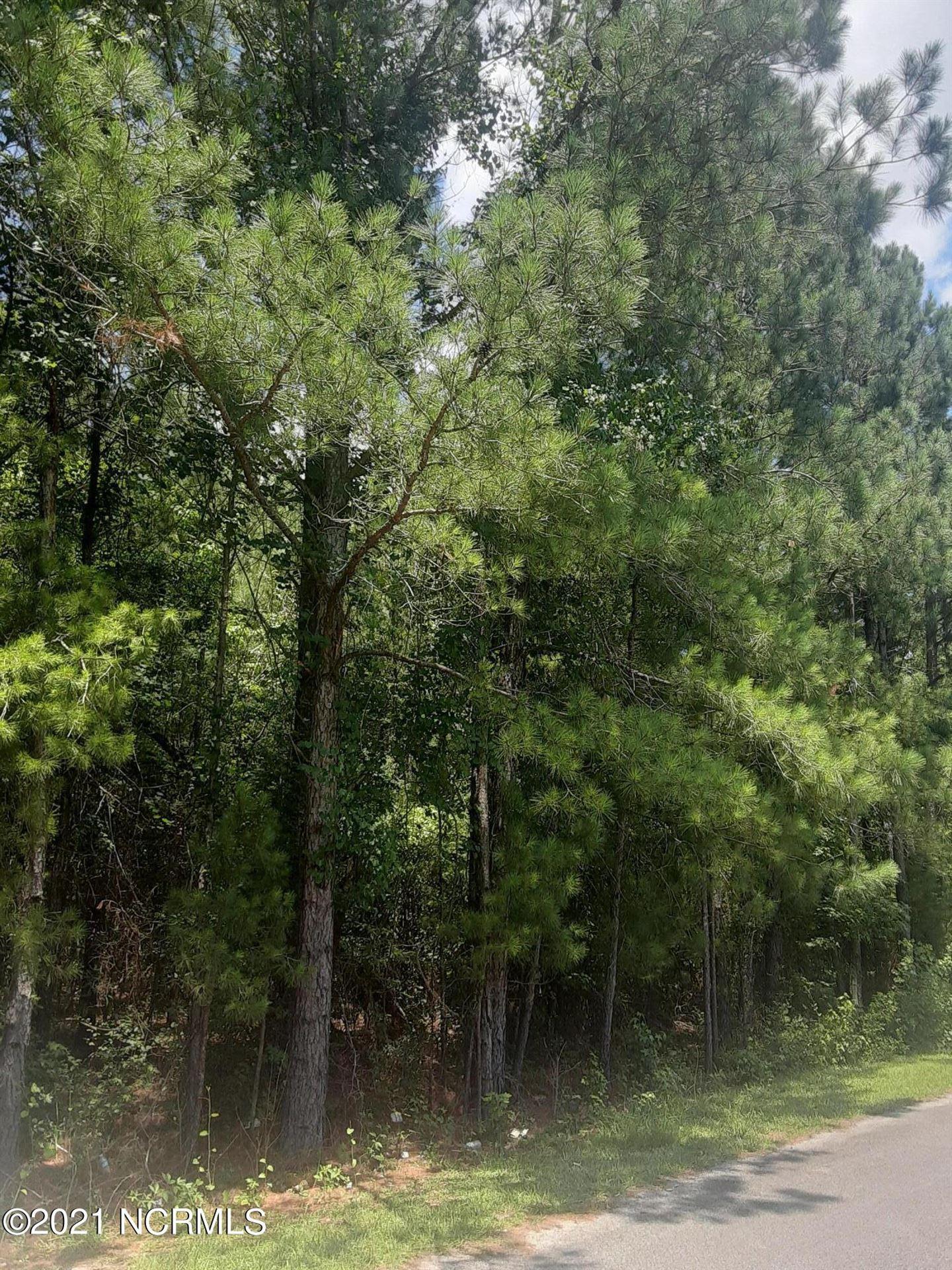 Photo of 323 Cottonwood Lane, Castle Hayne, NC 28429 (MLS # 100279501)