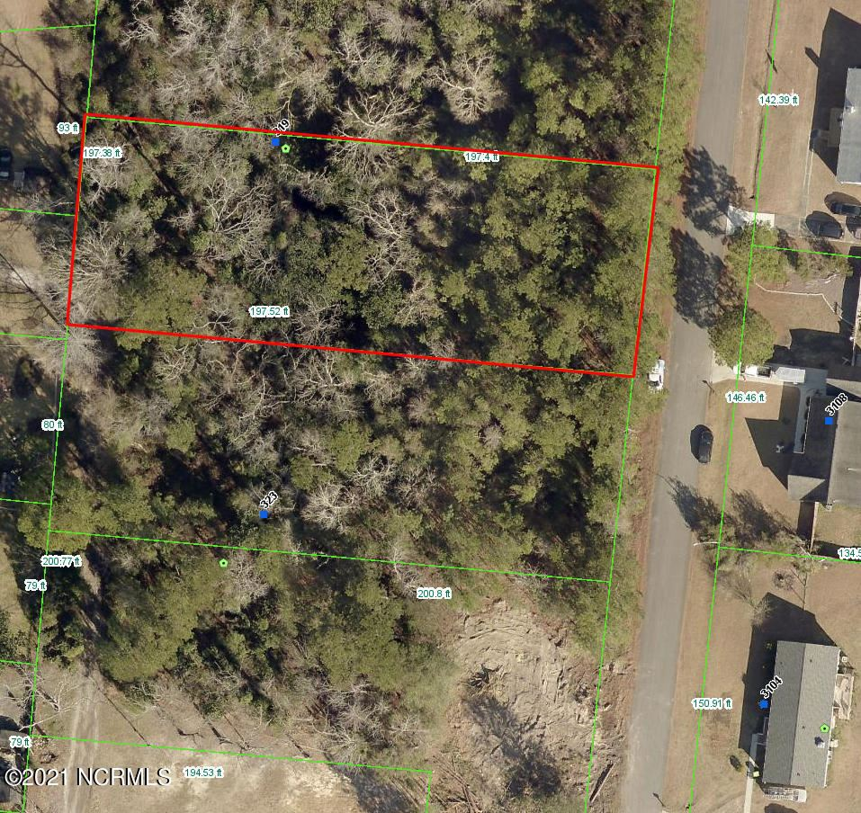 Photo of 319 Cottonwood Lane, Castle Hayne, NC 28429 (MLS # 100279502)