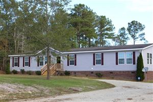 Photo of 604 Bannermans Mill Road, Richlands, NC 28574 (MLS # 100191514)